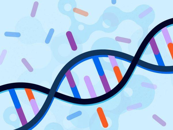 Những điều bạn cần biết về gen MTHFR
